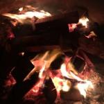 国立公園キャンプ場での夜は満天の星